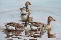 Kerstin-Birk-Animals-Water-Nature-Water-Modern-Times-Realism