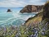Kerstin Birk, Blue Bells an der Küste