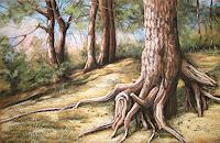 Kerstin-Birk-Landscapes-Summer-Nature-Wood-Modern-Times-Realism