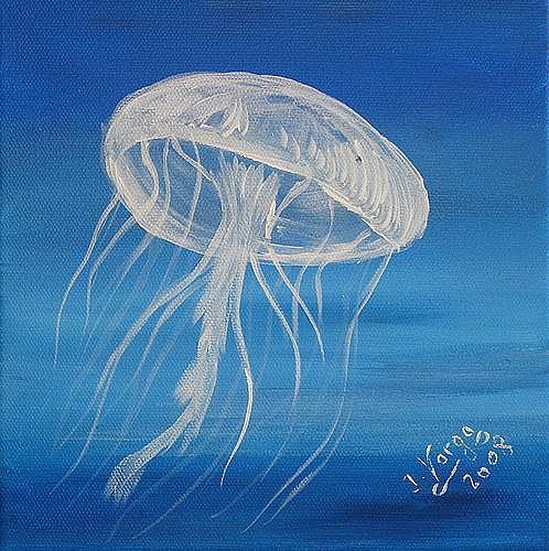 Irene Varga, Sea life with jellyfish, Animals: Water