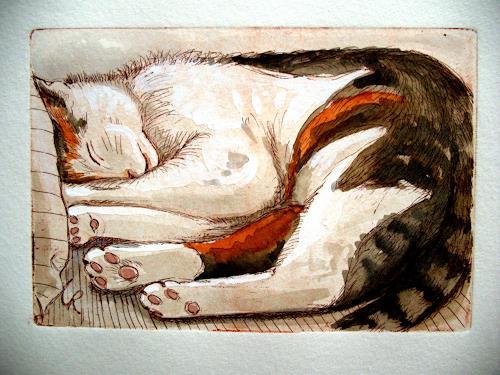 Schlafende Katze Auf Dem Sofa By Ute Reichenbach Miscellaneous Animals Printing Graphics