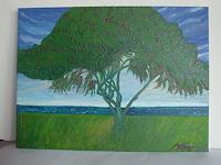 Virgy-Nature-Miscellaneous-Landscapes-Tropics