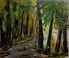 Andrea Finck, Ein Gefühl für Wald oder Hambacher Forst