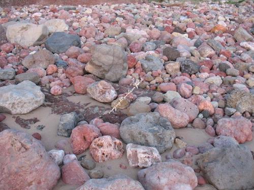 Andrea Finck, Bunte Steine, Nature: Rock, Miscellaneous, Contemporary Art