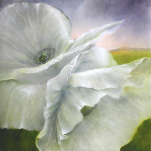 Annette Schmucker, Weißer Mohn., Nature, Plants, Contemporary Art, Expressionism