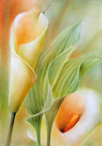 Annette Schmucker, Callas, Plants: Flowers, Plants: Flowers, Contemporary Art, Expressionism