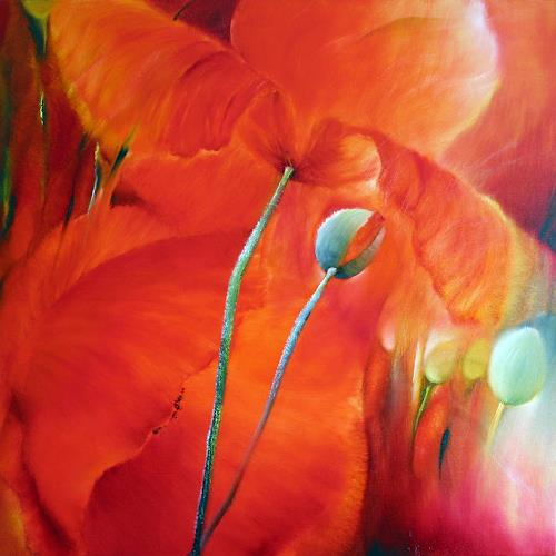 Annette Schmucker, Roter Mohn IV, Plants: Flowers, Contemporary Art, Expressionism