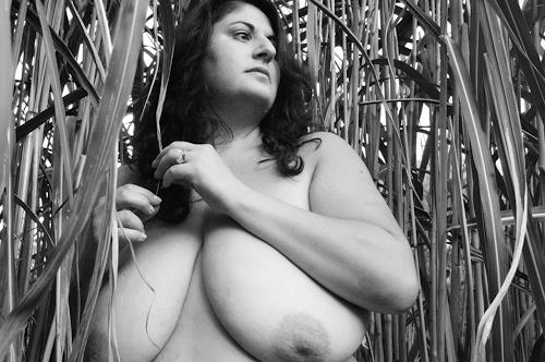 Berta A. Daniels, Wendy in the reeds, Erotic motifs: Female nudes, People: Portraits, Abstract Expressionism
