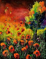 p. ledent, red poppies 451130