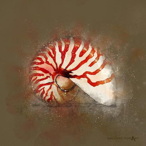 Artur Wasielewski, SHELL MUD NAUTILUS-RED, Decorative Art, Still life, Modern Age, Abstract Expressionism