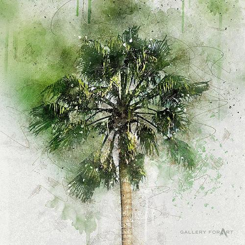 Artur Wasielewski, PALM GREEN BEAUTY-04, Plants: Palm, Landscapes: Tropics, Modern Age