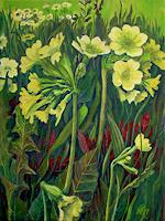 Guenther-Hofmann-Plants-Flowers-Nature-Miscellaneous