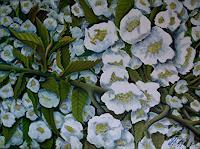 hofmannsART-Plants-Trees-Times-Spring-Modern-Age-Impressionism