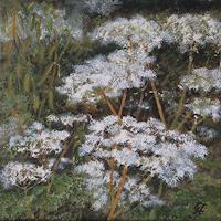 Guenther-Hofmann-Plants