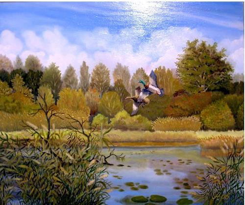 hofmannsART, Wildenten am Altrhein, Miscellaneous Landscapes, Animals: Water, Abstract Art