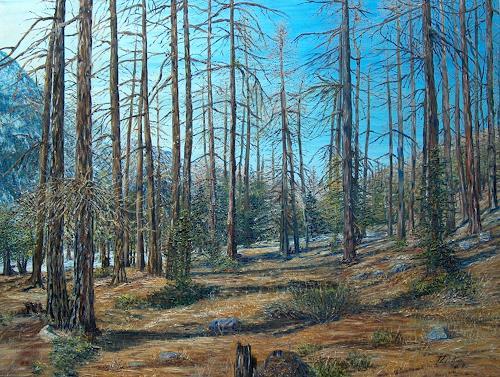 Theresia Züllig, Lärchenwald, Nature: Wood, Plants: Trees, Impressionism
