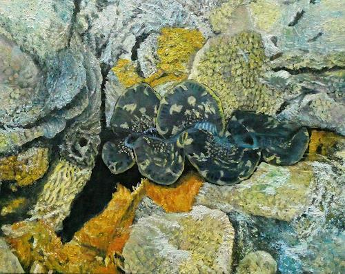 Theresia Züllig, Muschelwunder auf Mihiri, Nature: Water, Landscapes: Sea/Ocean, Naturalism