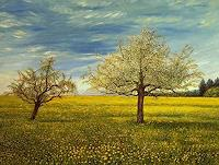 Theresia Zuellig Art Landscapes: Spring Nature: Earth Modern Age Impressionism