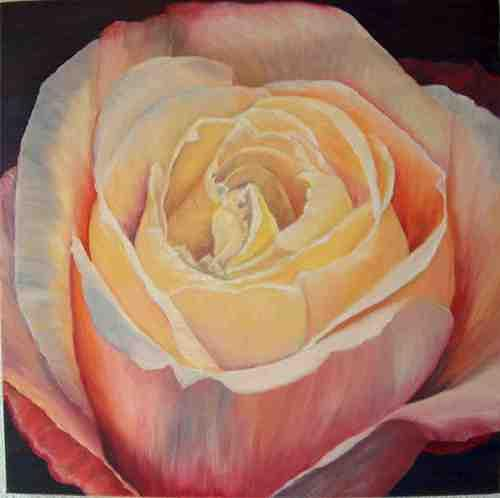 Theresia Züllig, Rose, Plants: Flowers, Plants: Flowers, Naturalism