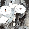 k. niksic, White Poppy