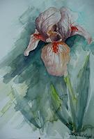 Anne-Waldvogel-Plants-Flowers-Decorative-Art-Modern-Age-Impressionism