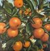 Sabine Schramm, Orangen, Still life, Contemporary Art
