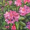 Sabine Schramm, Rhododendron, Plants: Flowers, Contemporary Art