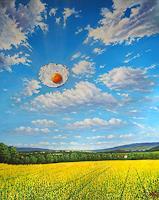 Wolfgang-Rose-Landscapes-Nature-Modern-Age-Photo-Realism