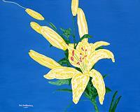 Jens-Jacobfeuerborn-Plants-Flowers