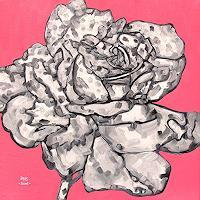Jens-Jacobfeuerborn-Plants-Flowers-Fantasy