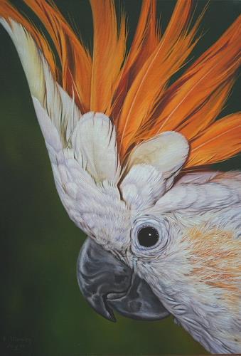 Ralf Vieweg, Orangenhauben-Kakadu, Animals: Air, Nature: Earth, Photo-Realism