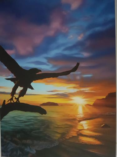 Ralf Vieweg, Adler im Sonnenaufgang, Landscapes: Sea/Ocean, Animals: Air, Photo-Realism