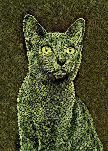 Liona Toussaint, CATS CAMOUFLAGE, Animals: Land, Decorative Art, Abstract Art