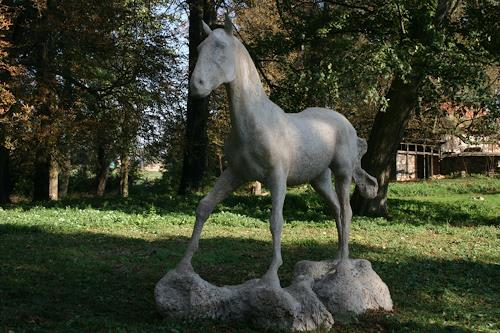 Simon Schade, Anhaltendes Pferd, Movement, Animals: Land, Contemporary Art