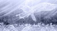 Ronny-Strehmann-Times-Winter-Fantasy