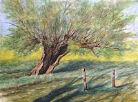 Joachim-Lilie-Landscapes-Summer-Plants-Trees-Modern-Times-Realism