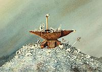 Joachim-Lilie-Fantasy-Still-life-Contemporary-Art-Post-Surrealism