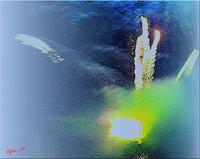 Orfeu-de-SantaTeresa-Miscellaneous-Outer-Space