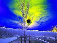 Henning-O-Landscapes-Plains-Fantasy-Modern-Age-Pop-Art
