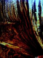 Theo-Hues-Abstract-art-Modern-Age-Modern-Age