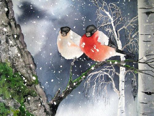 Stephanie Zobrist, Dompfaff Gimpel, Nature: Air, Animals: Air, Naturalism, Expressionism