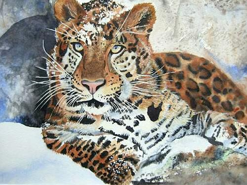 Stephanie Zobrist, Amurleopard, Animals: Land, Times: Winter, Naturalism, Expressionism