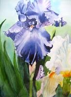 Stephanie-Zobrist-Times-Spring-Plants-Flowers-Modern-Times-Realism
