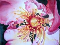 Stephanie-Zobrist-Plants-Flowers-Nature-Wood-Modern-Age-Naturalism