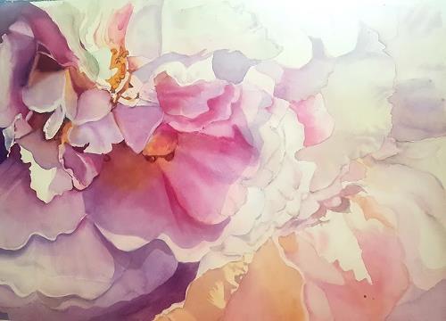 Stephanie Zobrist, Rosen Macro, Plants: Flowers, Nature, Naturalism, Expressionism