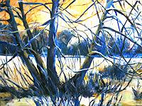Renee-Koenig-Landscapes-Winter-Plants-Trees-Contemporary-Art-Contemporary-Art