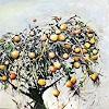 R. König, Ein vergessener Apfelbaum