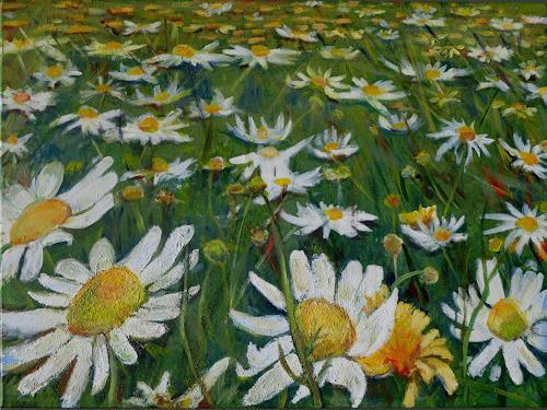 Renée König, Blumenwiese, Landscapes: Summer, Plants, Realism