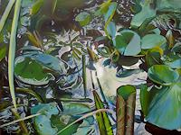 Renee-Koenig-Nature-Water-Plants-Flowers-Modern-Age-Photo-Realism