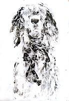 Renee-Koenig-Animals-Land-Burlesque-Contemporary-Art-Contemporary-Art